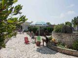 Affittasi appartamento in Villa Verde a Torre Vado